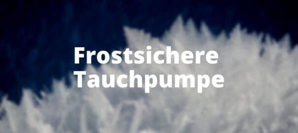 Frostsichere Tauchpumpe