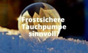 Frostsichere Tauchpumpe sinnvoll